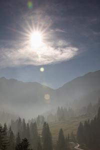 Fog - Tannheimer Tal  (Available for Print)